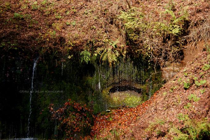 1120-0白糸の滝