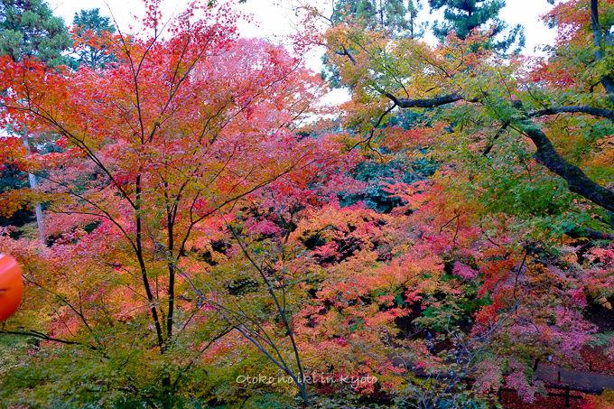 11月京都2012北野天満宮-6