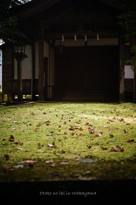和歌山2019-48