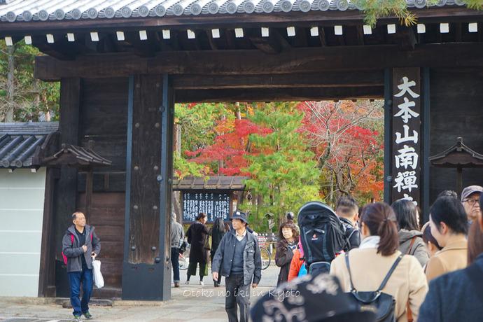 京都1125朝11月-1
