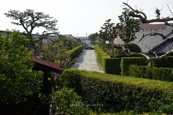 0620松阪3月-5