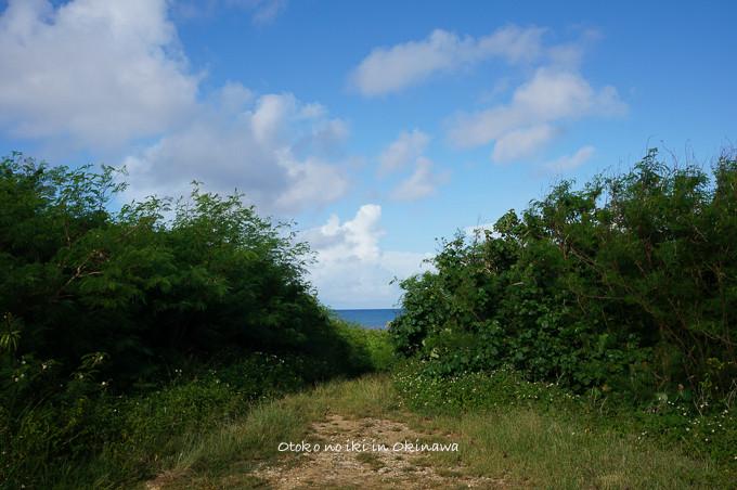 0409サンゴの浜9月-12