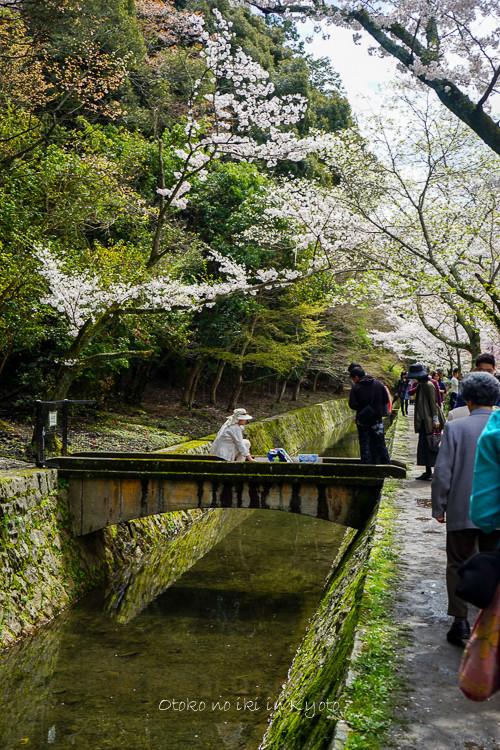 0407京都4月-66