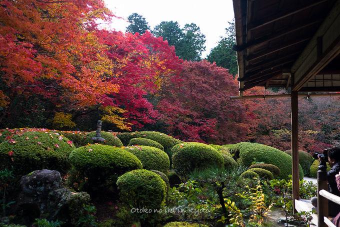 1129京都-1