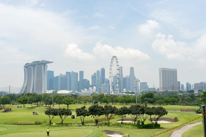 シンガポール20142014-5