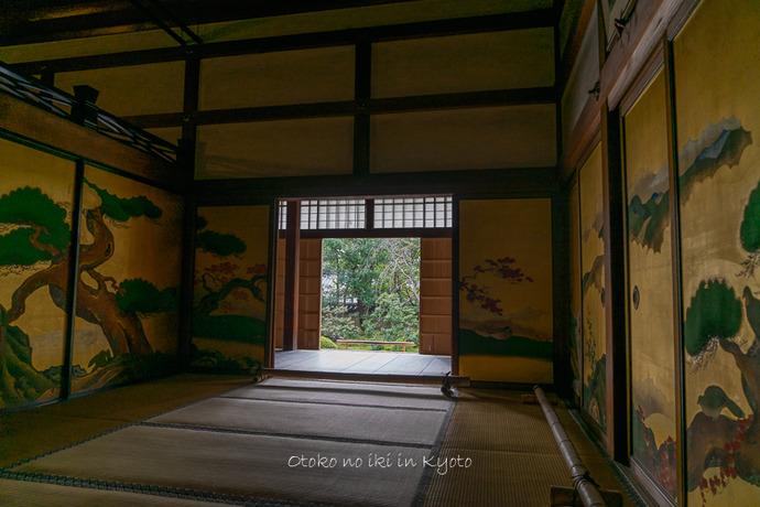 そうだ京都いこう20192019-179