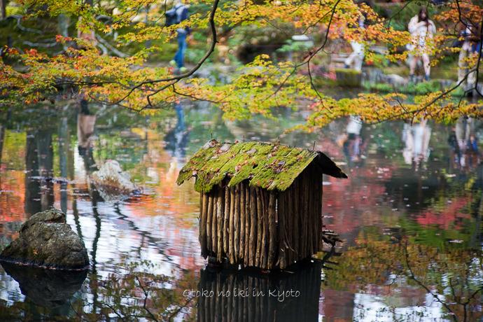 1108京都11月-27