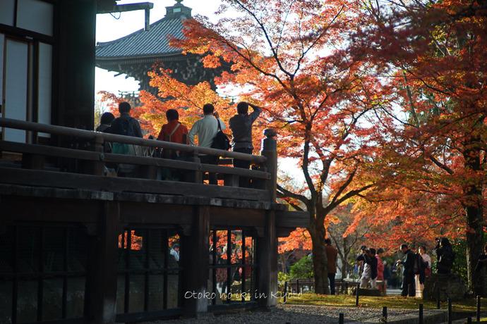 1108京都11月-44