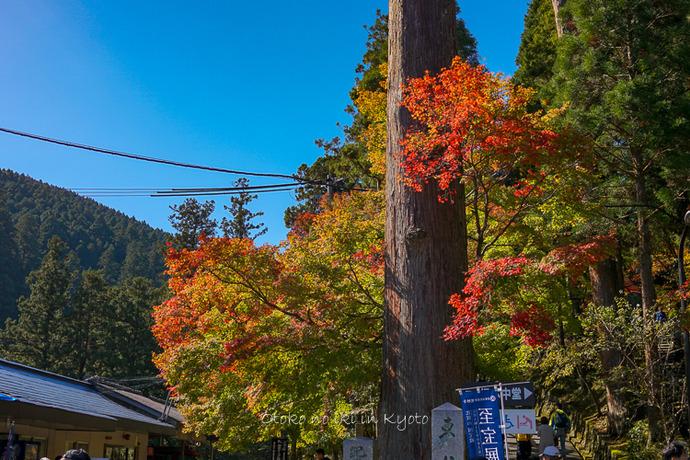京都10月2018-83
