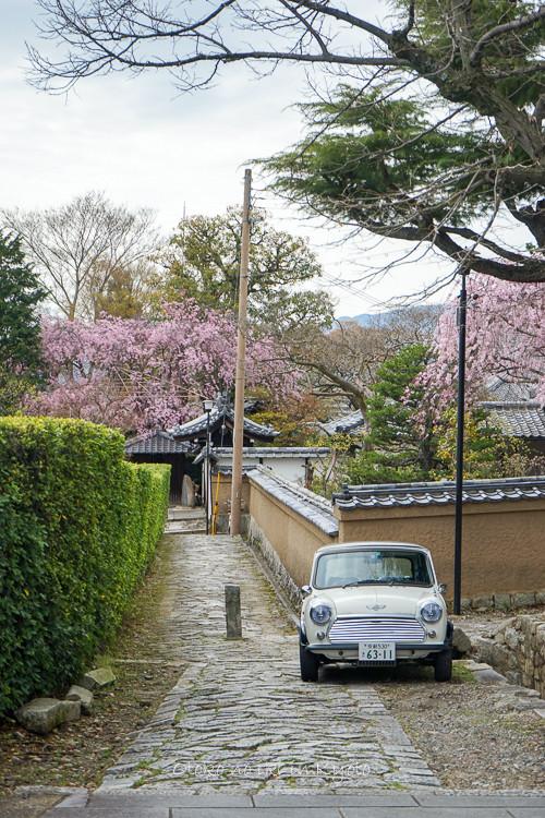 0407京都4月-98