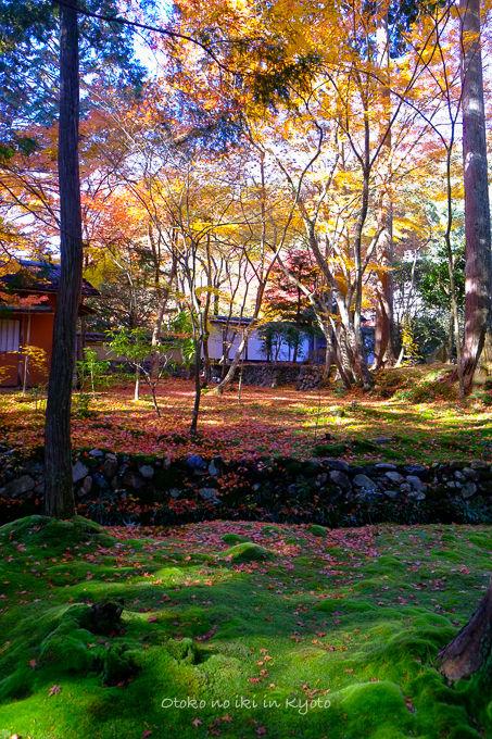 1130京都-1