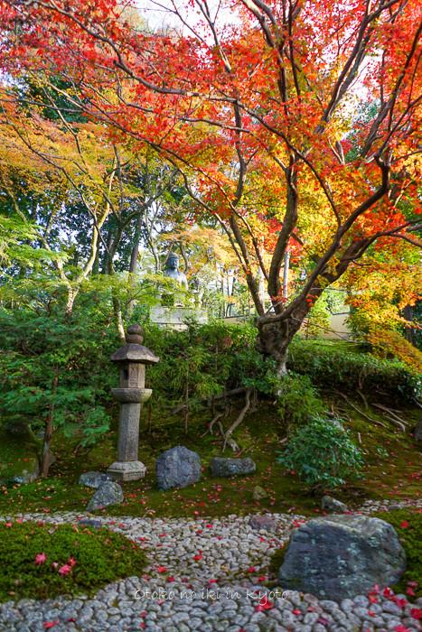 1108京都11月-49