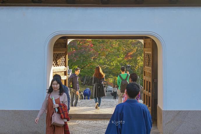 1118_京都2018-14