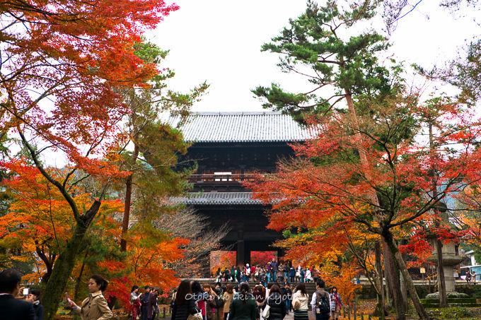 1128京都-13