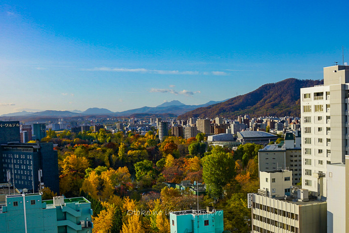 札幌余市2019-44