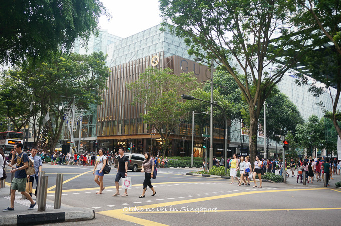 0113Singapore1月-38