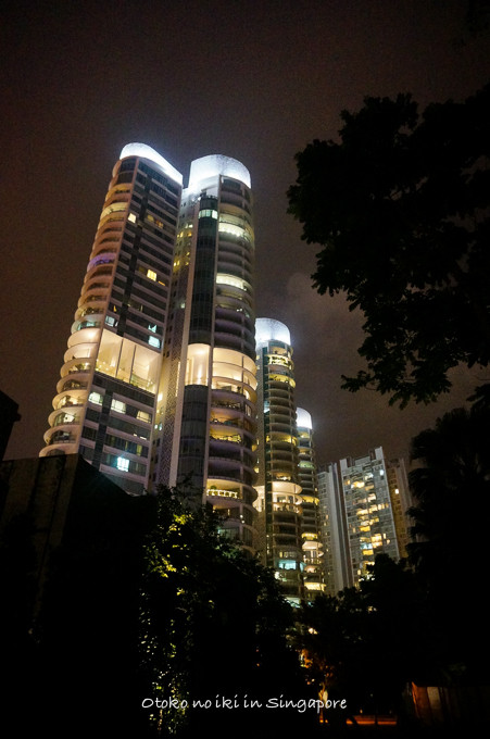 0113Singapore1月-43