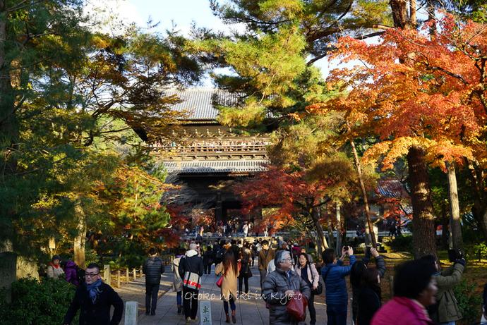 1123京都11月-33