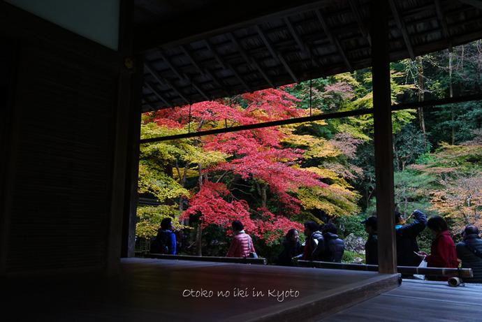 1123京都11月-25
