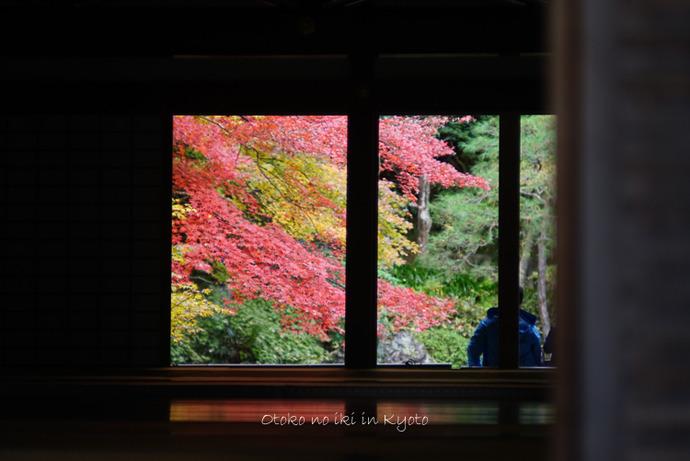 1123京都11月-29