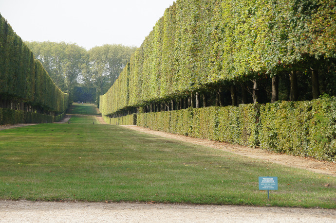 0331ヴェルサイユ宮殿9月-81