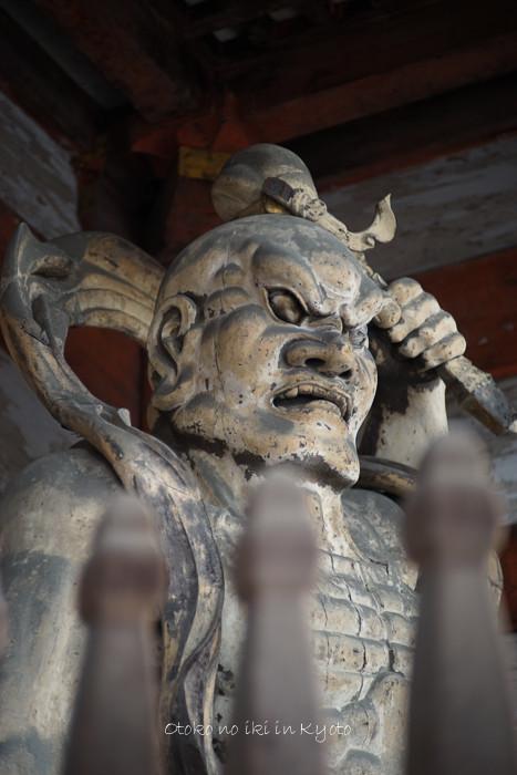 1120仁和寺11月-3