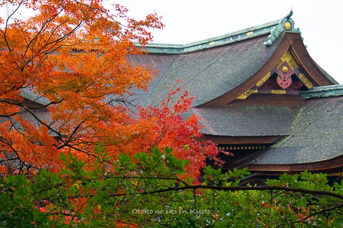 11月京都2012北野天満宮-12