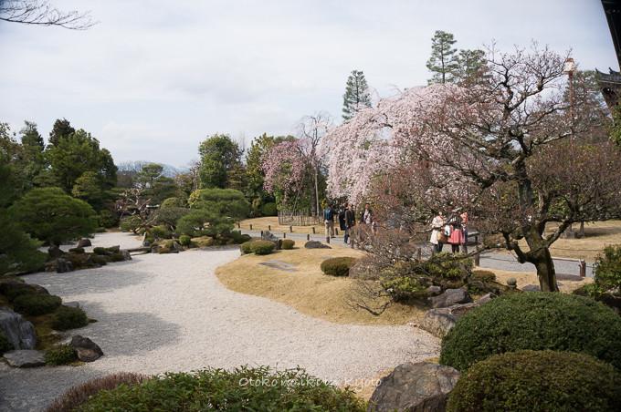 0324京都3月-24