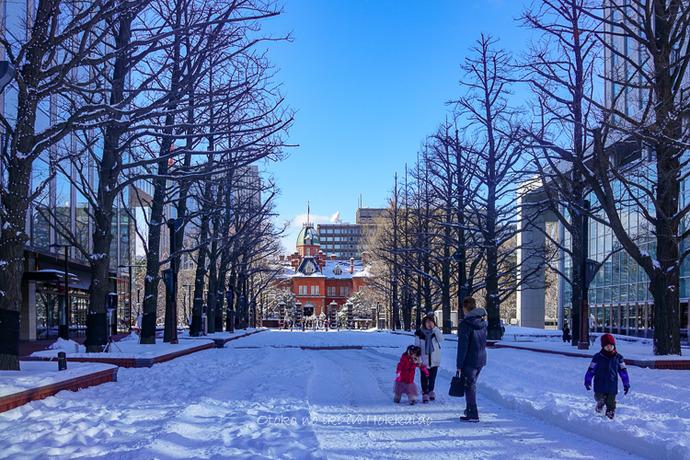201812北海道2018-149