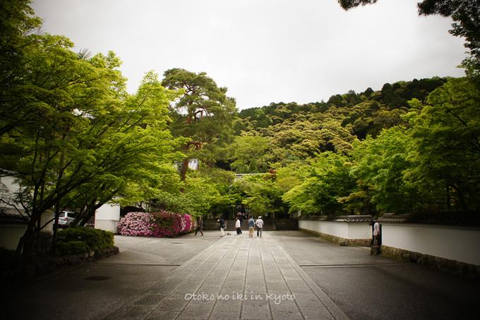 201205京都朝マラソン5月-16