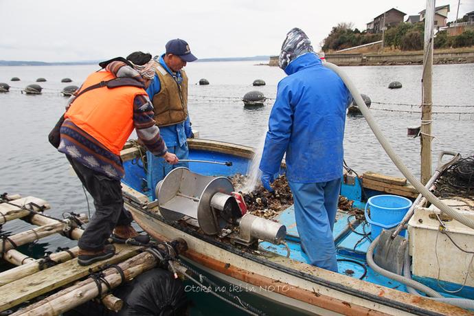 1110牡蠣漁2016-9