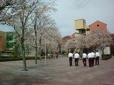 国立オリンピック記念青少年総合センター