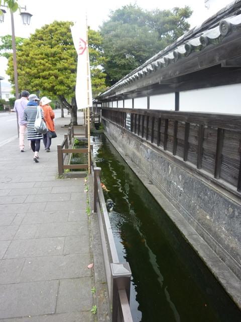 キャサP ~舞浜&下町散歩