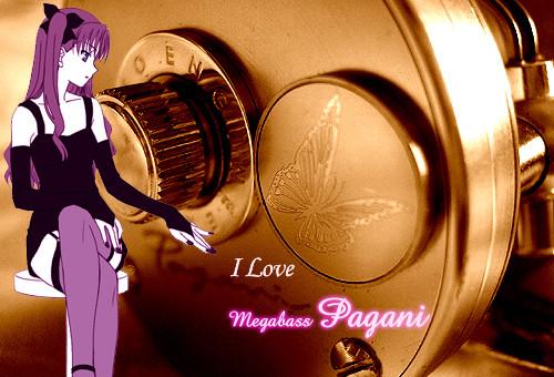 Megabass メガバス パガーニ P300★彡