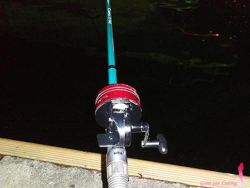 スピンキャストリールで港湾の釣り