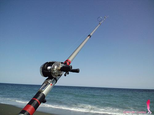 オリムピック 投げ竿 ゼブラ アマゾンで投げ釣り