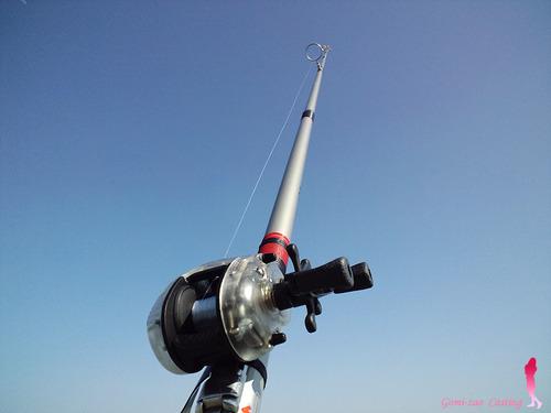 オリムピック 投げ竿 ゼブラ アマゾン 投げ釣り