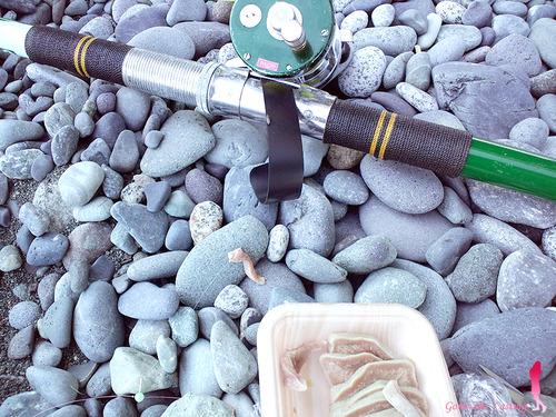 投げ釣りの代用エサ 豚タン(≧∇≦)