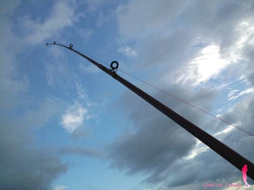 ダイワのごみ竿 いしもちゴールド390A