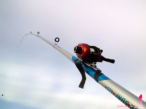 わくわく両軸 投げ釣りセット ブルーサーフ420★彡