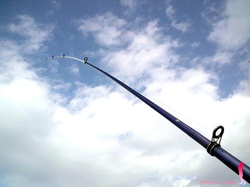 FISH ON 390 ごみ竿的な安物投げ竿♪