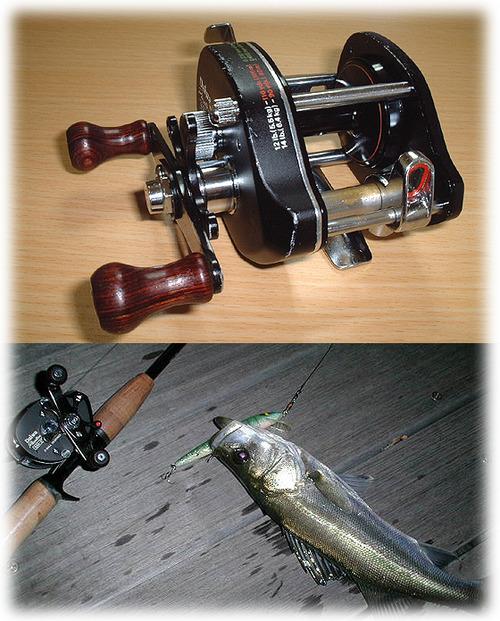 ダイワ ファントム&シーバス釣り