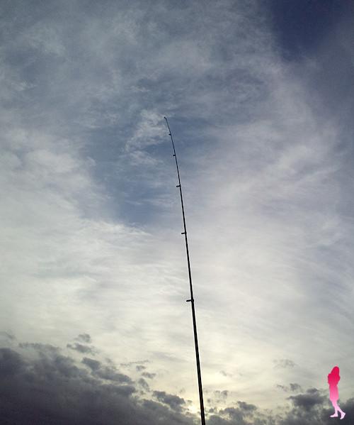 ダイワ 投げ竿 サーフパワーで投げ釣り