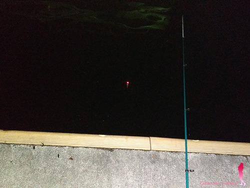 クローズドフェイスリールでウキ釣りに挑戦