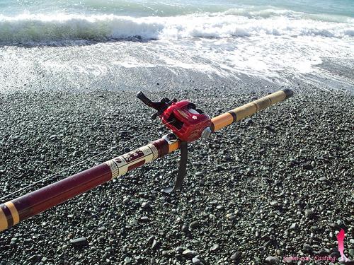 シマノ 磯竿 両軸遠投カゴ釣り 潮時15