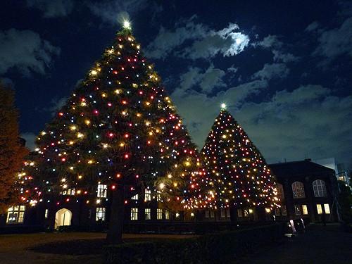 クリスマス★彡