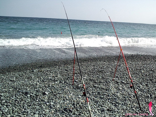 HIBIKI ひびき 投げ竿 & ABU505 投げ釣り♪