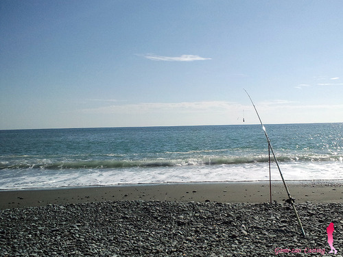 OLYMIPIC 投げ竿 NEW 鱗宝SURF 390 カーボンロッド★彡