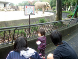 動物園・誕生日 022