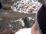 ゴミの山にしか見えないよね